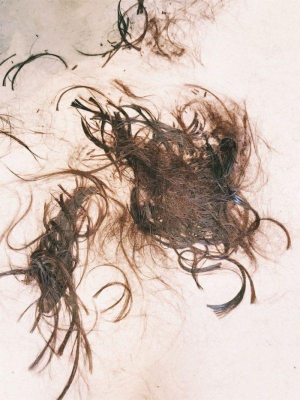 【QandA】直毛かくせ毛はなにで決まるのでしょうか?【@原宿】