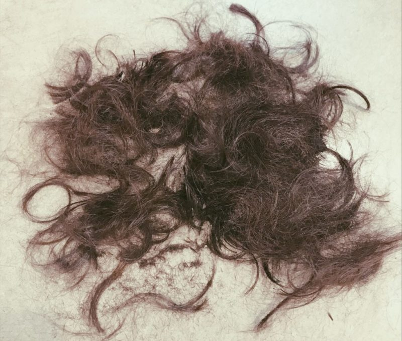 【QandA】髪をばっさり切るかどうか悩む。どう決めればいい?【@原宿】